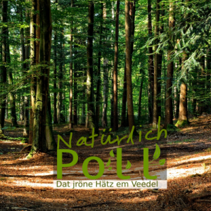 Idee: Natürlich Poll / Poller Natur Gruppe