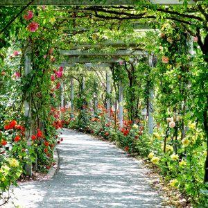 Idee: Offene Gärten Poll